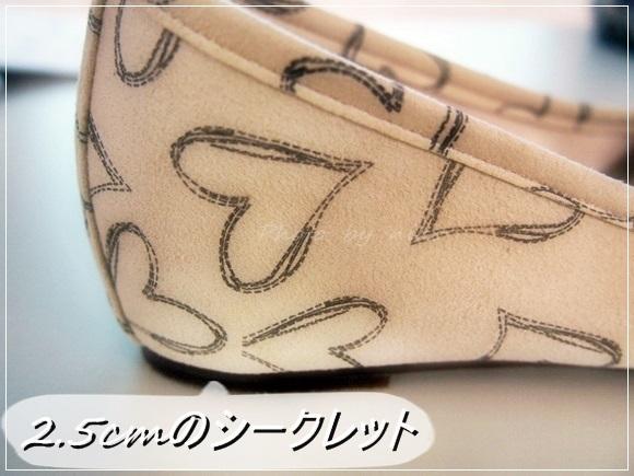 couleur-varie-ballet-shoes (10)